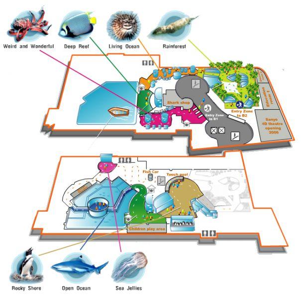 Океанариум (Siam Ocean World) в Бангкоке: фото, описание, стоимость посещения и как добраться